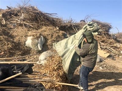 银川市园林管理局绿化一处仅存的一处植物垃圾处理点,由于场地受限、设施过于简陋等问题,无法满足植物垃圾处置需求。